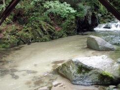 03水の木橋下の大淵09-5-29
