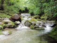 07小堰堤下流に好瀬が続く09-5-29