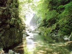 08笹子沢堰堤下流の大トロ場09-5-26