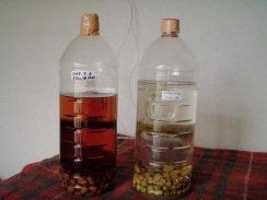 01サルナシ酒の仕込み09-7-27