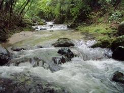 02小さな段差の落ち込みに広い瀬が続く09-7-29