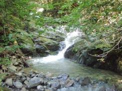 02樹木が張り出した第1滝09-8-28