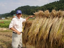 02農業体験中のT氏09-9-27