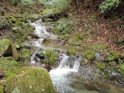 05連続するナメ滝下の良淵09-9-29