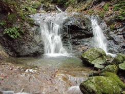09双流の第1滝3m09-9-29