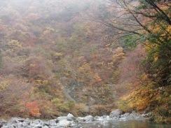 03#8入渓路から下流の紅葉09-11-25