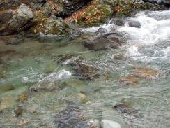 06#8上流の沈み石が多い瀬09-11-30
