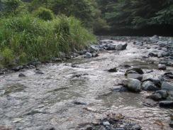 01沈み石の浅い瀬が続く10-7-27