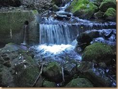 05小堰堤の滝壺11-6-29