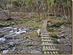 06木道が整備され登山靴でOK11-10-26