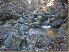 01冬涸れの水沢川11-12-13