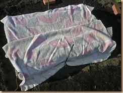 06毛布で包む11-12-26
