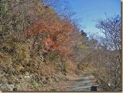 09林道の紅葉11-12-13
