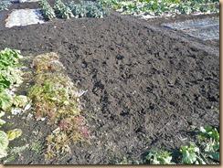 03堆肥をスキ込む12-1-26