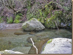 05水深があり底石が多い瀬12-4-25