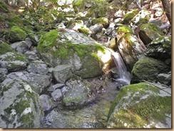 03石が折り重なるが水涸れ12-5-30