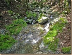 10岩盤の浅いナメ床が続く12-5-30