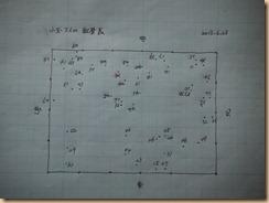 04小玉スイカの結実の配置表13-7-6