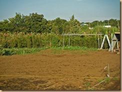 02雑草の整理が進んだ用田農園北13-8-28