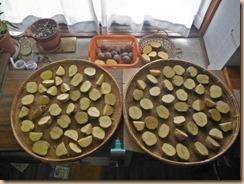 01種ジャガイモの切り分け14-2-2