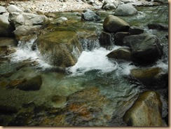 04小さな石の白泡立ちの落込み14-5-14