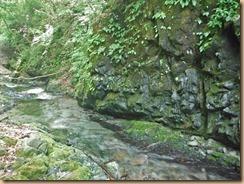 04左岩壁前の浅い瀬14-5-28
