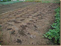 01堆肥の散布14-9-15