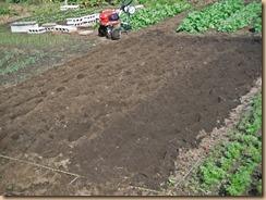 02ナス跡地の雑草整理と耕運施肥14-10-29