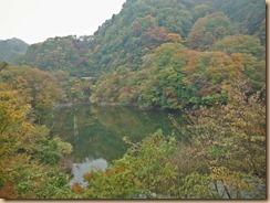 02早戸川の紅葉14-11-12