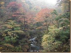 09早戸川の渓流に映える供養14-11-12