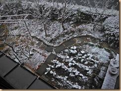 01雪景色2015-1-1