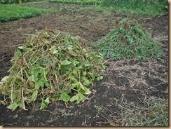 03整理した蔓葉と雑草の山16-8-11