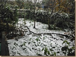 01初雪16-11-24