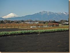 02富士山17-1-10