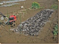 01苗床用地に石灰・堆肥散布17-3-19