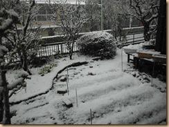 01自宅庭の雪景色2018-1-22